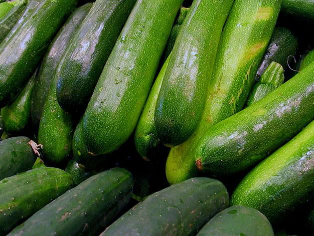Овоч кабачок – вирощування