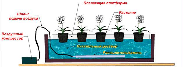 Схема гідропоніки