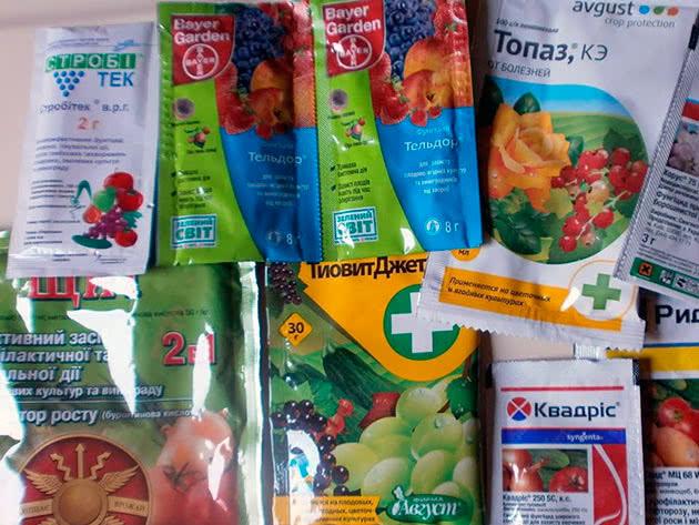 Хімічні препарати від хвороб