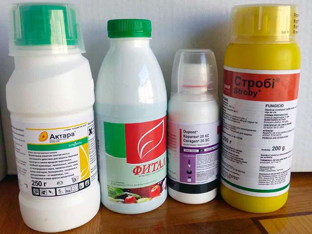 Химикаты от муравьёв
