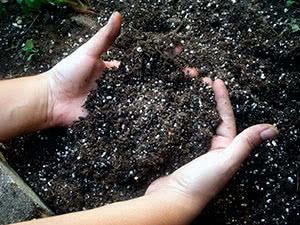 Розкислення ґрунту