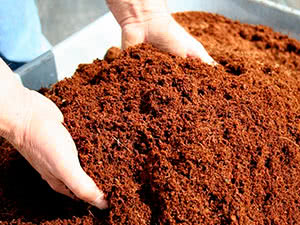 Освежение старой почвы