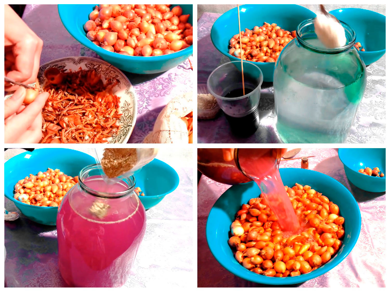 Приготовление раствора и обработка лука