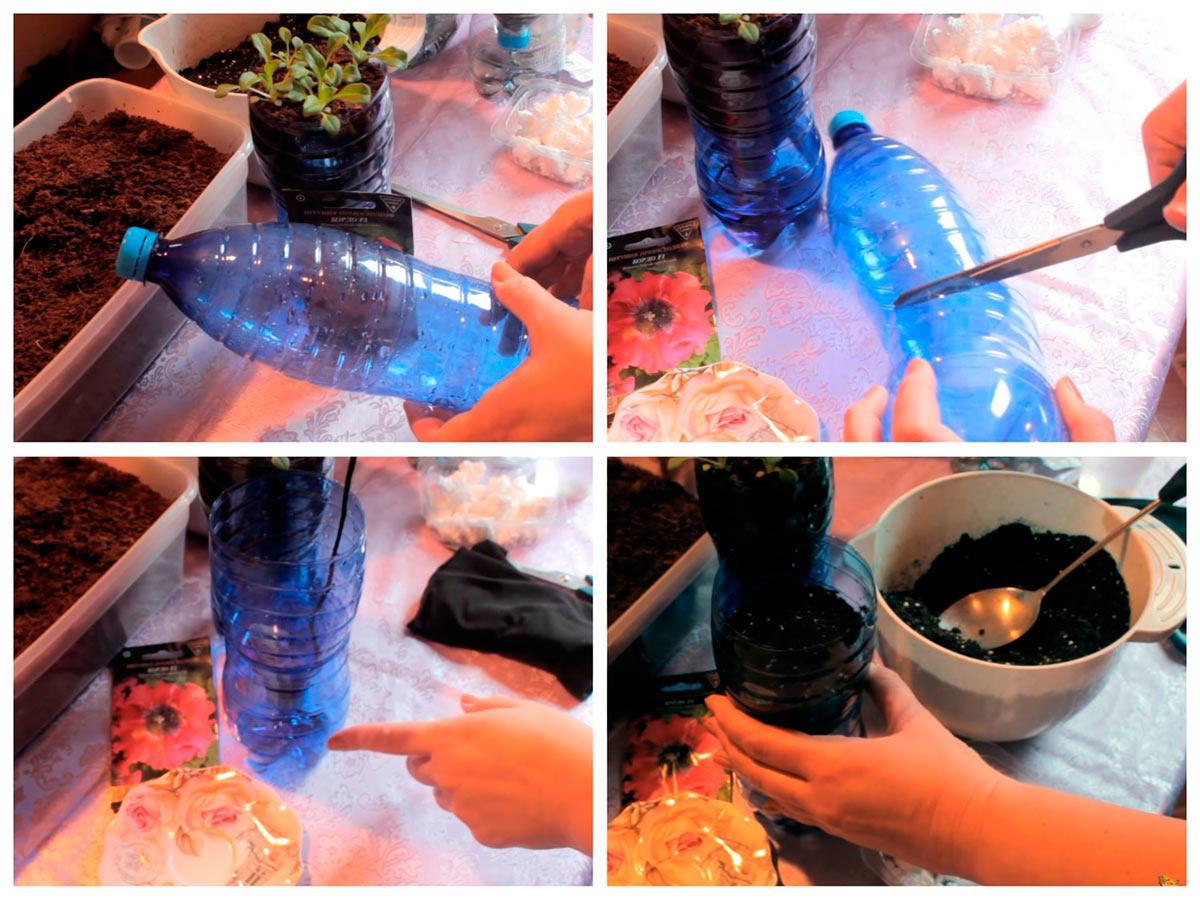 Емкость для выращивани петунии