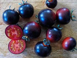 Сорти чорних томатів для ґрунту і теплиці