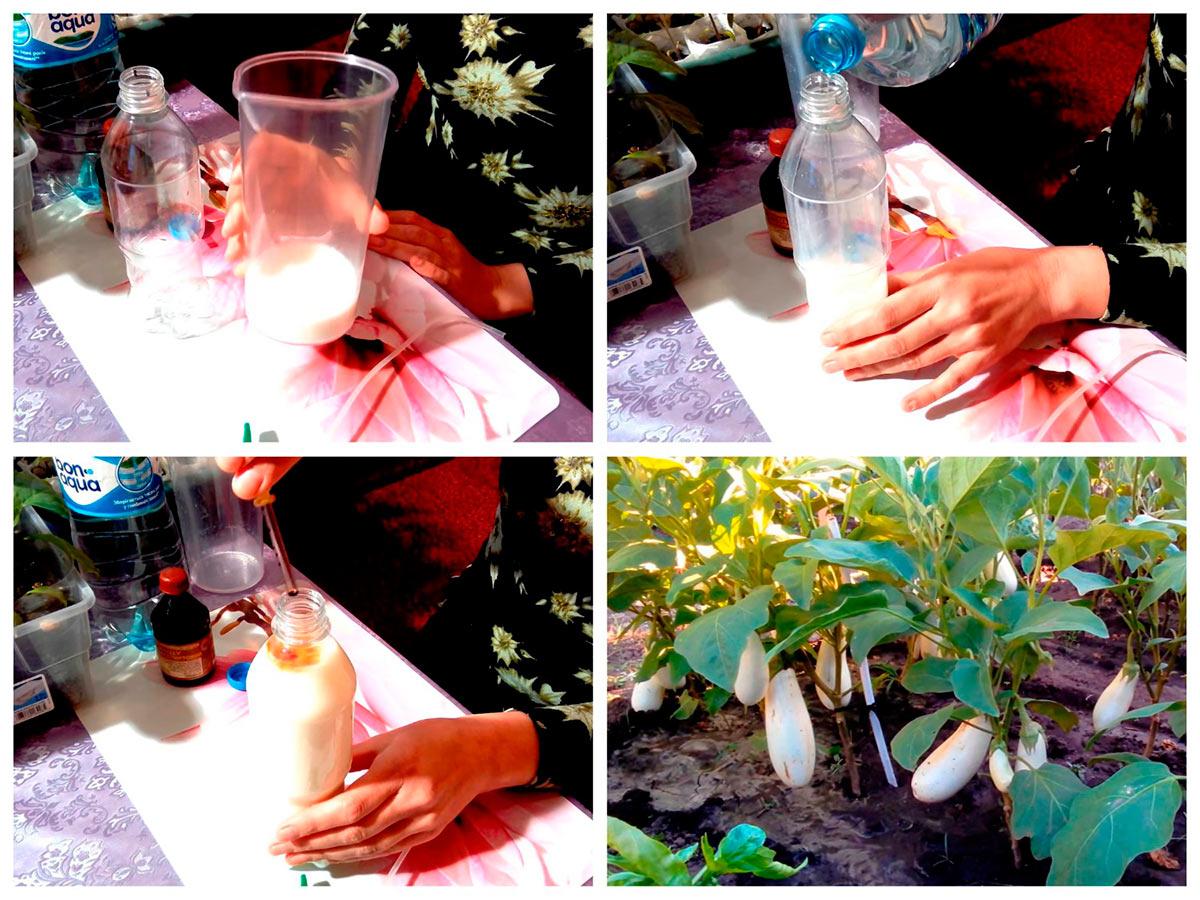 Приготовление раствора с йодом для опрыскивания рассады по листьям
