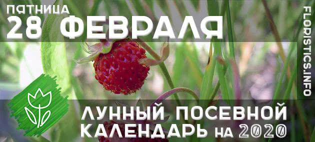 Лунный календарь садовода-огородника на 28 февраля 2020 года