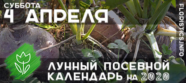 Лунный календарь садовода-огородника на 4 апреля 2020 года