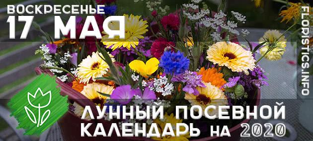 Лунный календарь садовода-огородника на 17 мая 2020 года