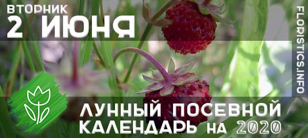 Лунный календарь садовода-огородника на 2 июня 2020 года