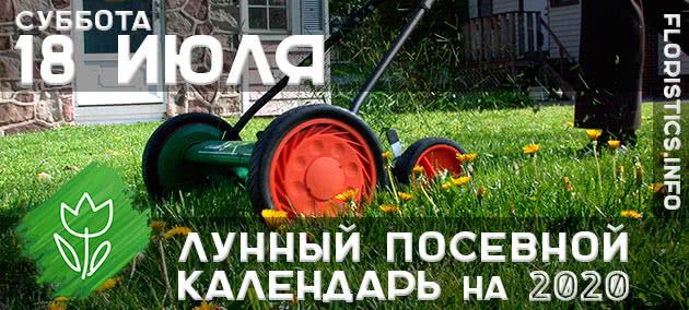 Лунный календарь садовода-огородника на 18 июля 2020 года