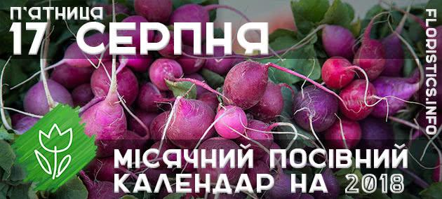 Місячний календар садівника-городника на 17 серпня 2018 року