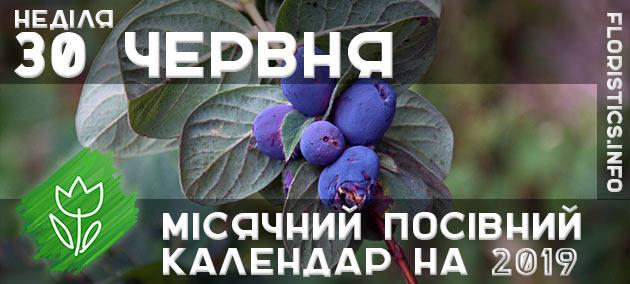 Місячний календар садівника-городника на 30 червня 2019 року