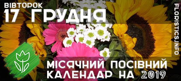 Місячний календар садівника-городника на 17 грудня 2019 року