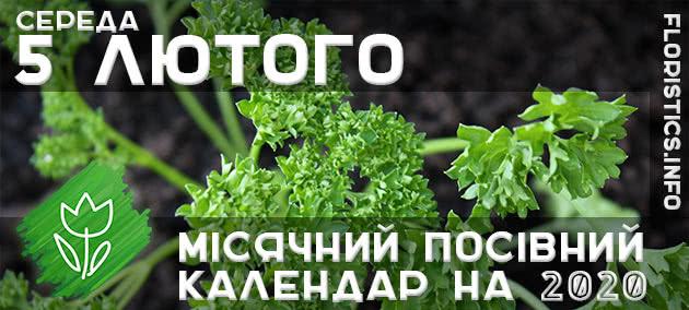 Місячний календар садівника-городника на 5 лютого 2020 року