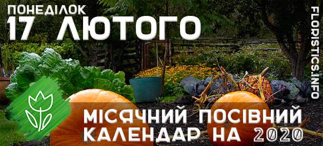 Місячний календар садівника-городника на 17 лютого 2020 року