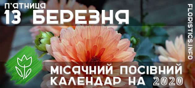 Місячний календар садівника-городника на 13 березня 2020 року