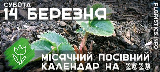 Місячний календар садівника-городника на 14 березня 2020 року