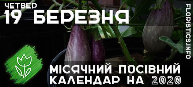 Місячний календар садівника-городника на 19 березня 2020 року