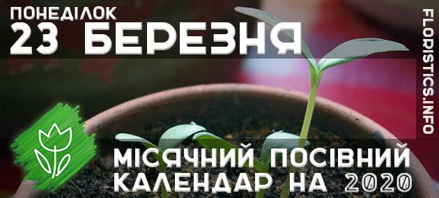 Місячний календар садівника-городника на 23 березня 2020 року