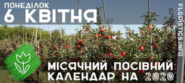 Місячний календар садівника-городника на 6 квітня 2020 року
