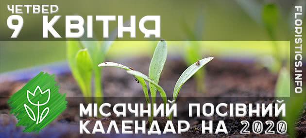 Місячний календар садівника-городника на 9 квітня 2020 року