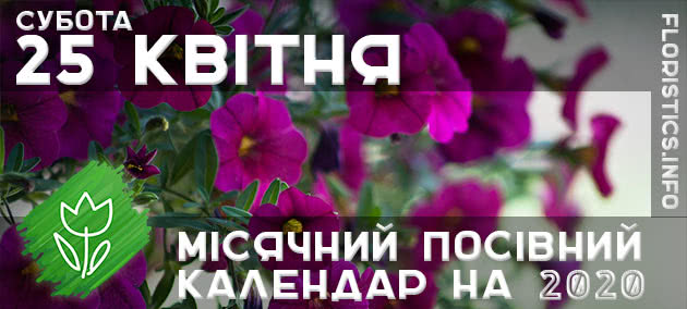 Місячний календар садівника-городника на 25 квітня 2020 року