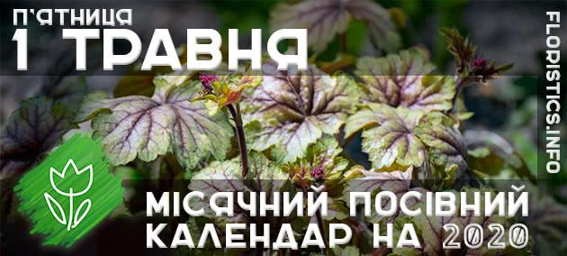 Місячний календар садівника-городника на 1 травня 2020 року