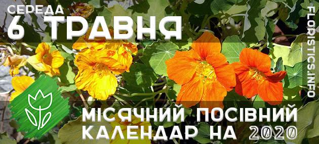 Місячний календар садівника-городника на 6 травня 2020 року