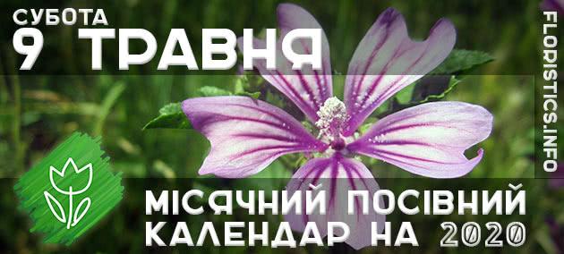 Місячний календар садівника-городника на 9 травня 2020 року
