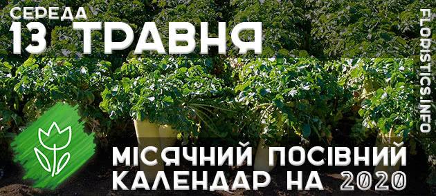 Місячний календар садівника-городника на 13 травня 2020 року