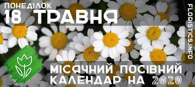 Місячний календар садівника-городника на 18 травня 2020 року