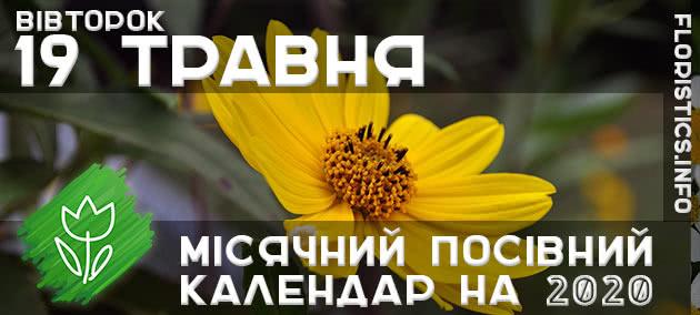 Місячний календар садівника-городника на 19 травня 2020 року