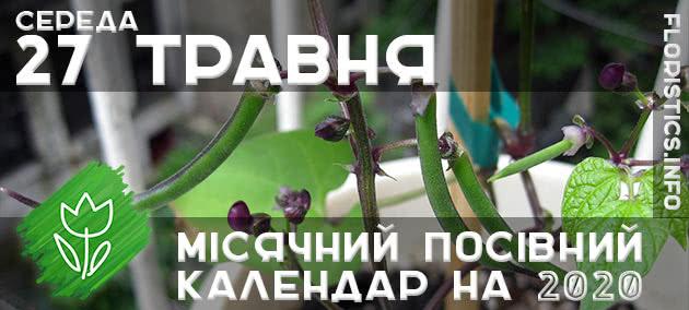 Місячний календар садівника-городника на 27 травня 2020 року