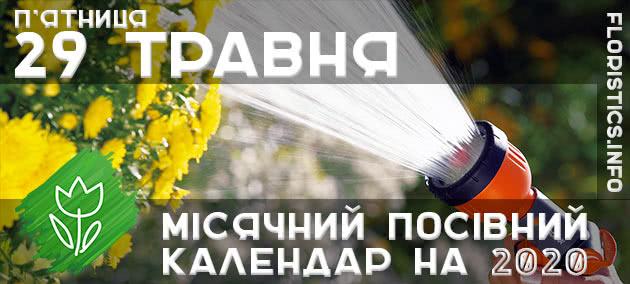 Місячний календар садівника-городника на 29 травня 2020 року
