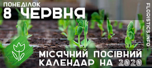 Місячний календар садівника-городника на 8 червня 2020 року