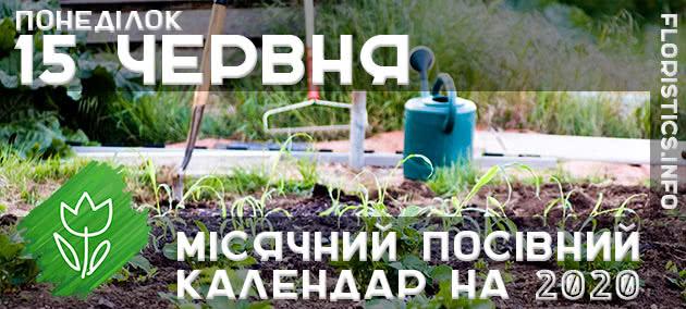 Місячний календар садівника-городника на 15 червня 2020 року