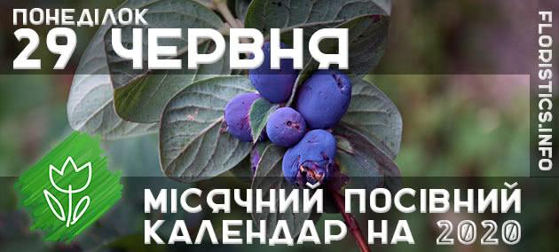 Місячний календар садівника-городника на 29 червня 2020 року
