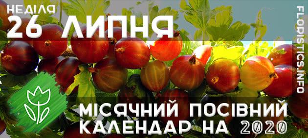 Місячний календар садівника-городника на 26 липня 2020 року