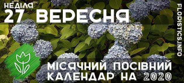 Місячний календар садівника-городника на 27 вересня 2020 року