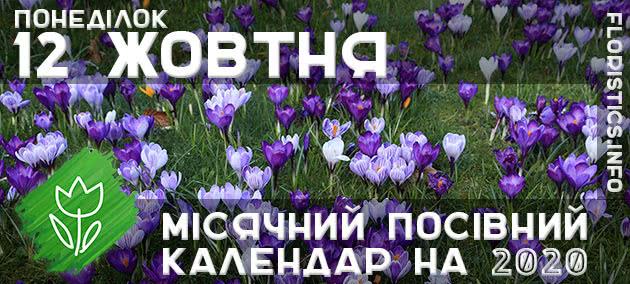 Місячний календар садівника-городника на 12 жовтня 2020 року