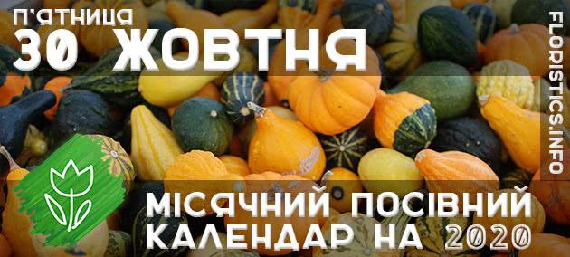 Місячний календар садівника-городника на 30 жовтня 2020 року